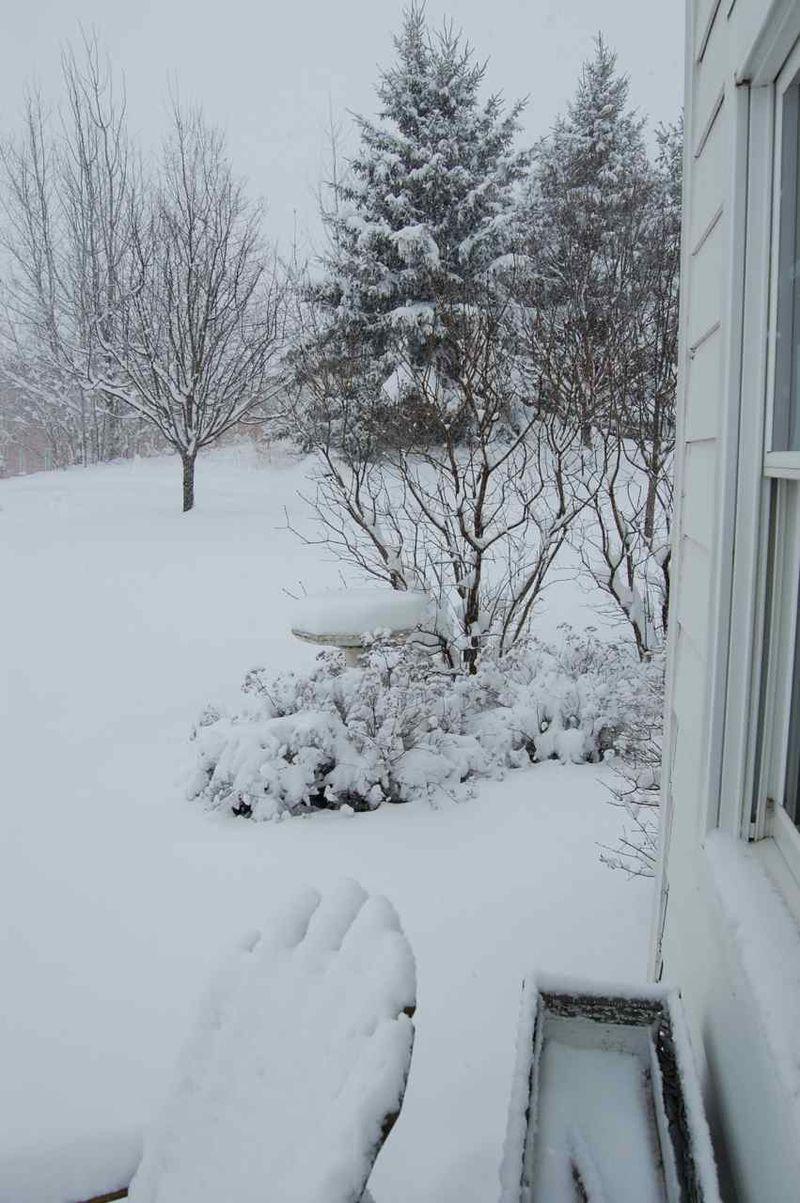 Snowy sunday08
