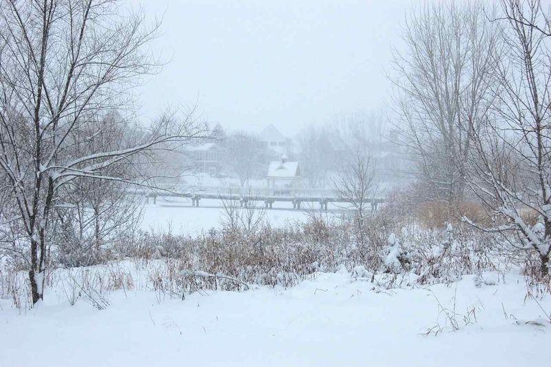 Snowy sunday13