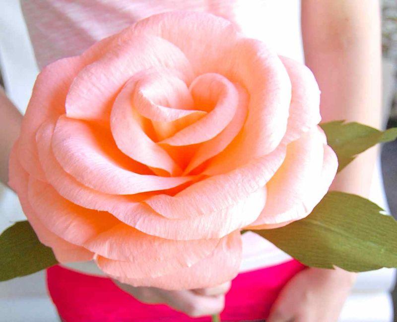 Finished-rose-1