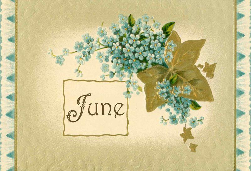 June FINSHED
