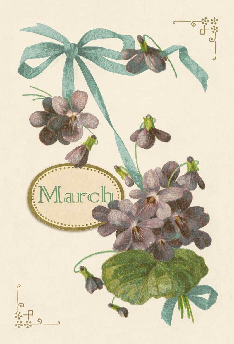 March Cachette9