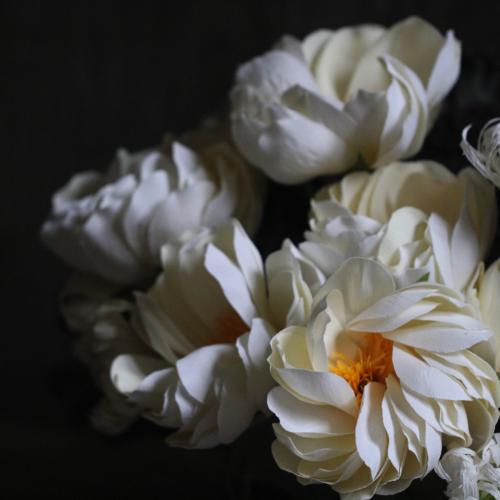Paper Peony - November Flower